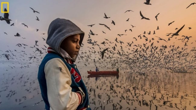 This moment was captured during sunrise along the banks of the Yamuna River in Delhi, India. This boy was thinking silently, and visitors were enjoying the loud musical chirping of thousands of seagulls. Picture: Navin Vatsa /National Geographic Travel Photo Contest