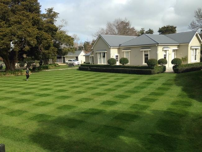 Now that is a well mowed patch of grass.