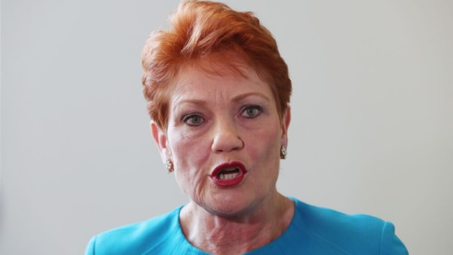 Pauline Hanson at Parliament House in Canberra this week announcing she is co-chair for a controversial inquiry into the family court system. Photo: Kym Smith News Corp Australia.
