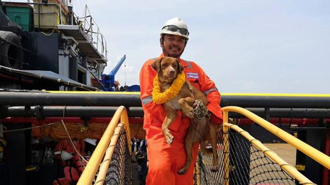 She was rescued by oil rig workers who spotted her head in the water.