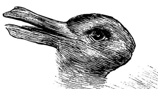 Duck, rabbit optical illusion: What it says about your