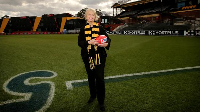 Adelaide Crows chairman Rob Chapman: execute well and win