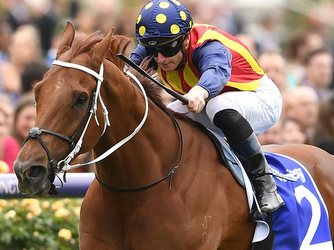 James McDonald and Nature Strip run their rivals ragged, including hot favourite Santa Ana Lane, in the Sprint Classic.