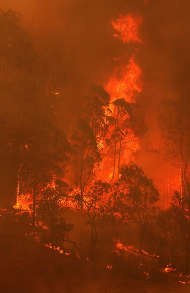 Bushfires take hold on the South Coast of NSW, in the Bega Valley near Wyndham during the Black Summer crisis. Picture: Toby Zerna
