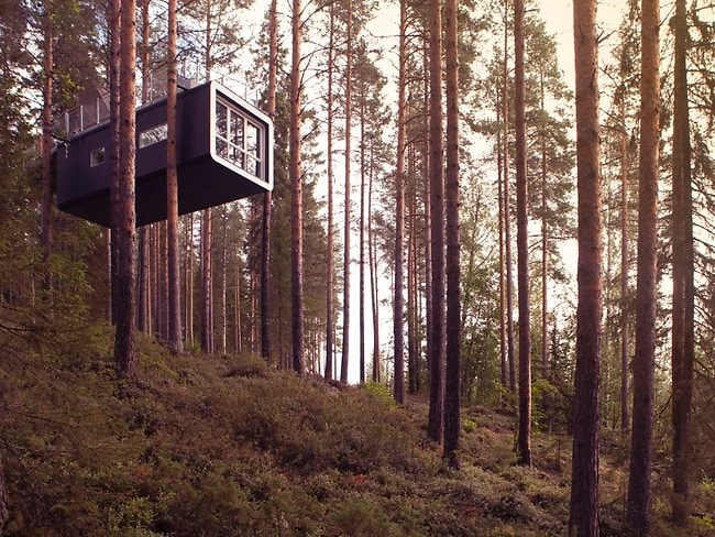 Perched in a tree, the hotel is nearing completion. Picture: Peter Lundstrom, WDO www.treehotel.se, supplied by WENN.com