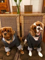 Henry and Kenny McFall are trying on their new outfits for the winter. Picture: Meagan McFall