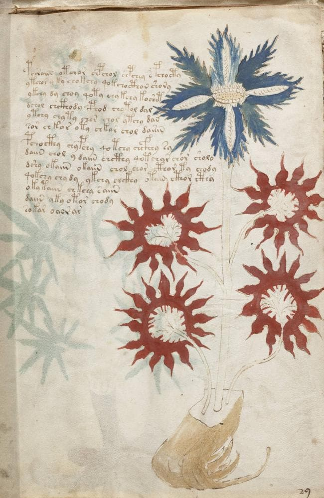 A page from the Voynich manuscript showing its indecipherable 15th century text.