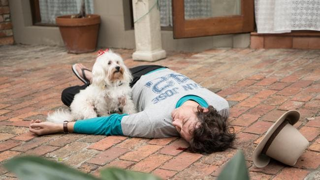 Guard dog ... Samuel Johnson recreates Molly Meldrum's 2011 fall, with help from the real-life Ziggy.