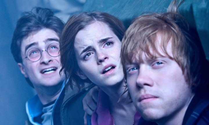 Netflix is showing every Harry Potter film in January