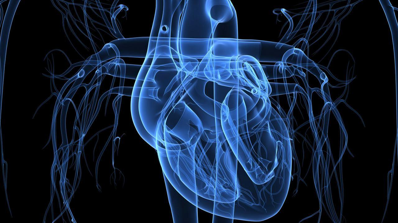 Genetics, Mobile Technology Used to Fight Heart Disease