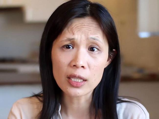 Pansy Lai appears in an ad expressing concerns about legalising same-sex marriage.