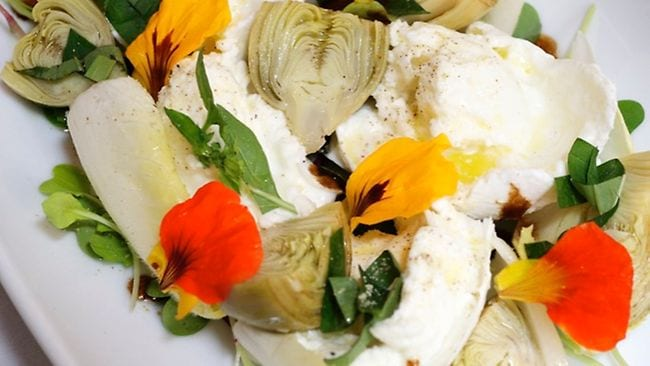 buffalo mozzarella with artichokes