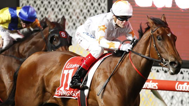 The Maher/Eustace team had Group 1 success with Loving Gaby last month. Picture: Getty Images
