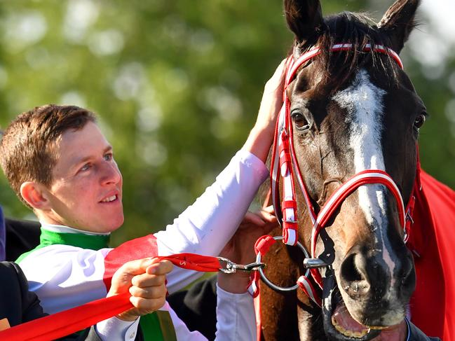 Lane rode Lys Gracieux to win the Cox Plate and the Arima Kinen in Japan. Picture: AAP