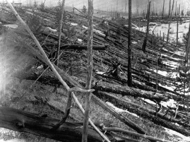 In this 1953 file photo, trees lie strewn across the Siberian countryside 45 years after an asteroid struck the Earth near Tunguska. Picture: AP
