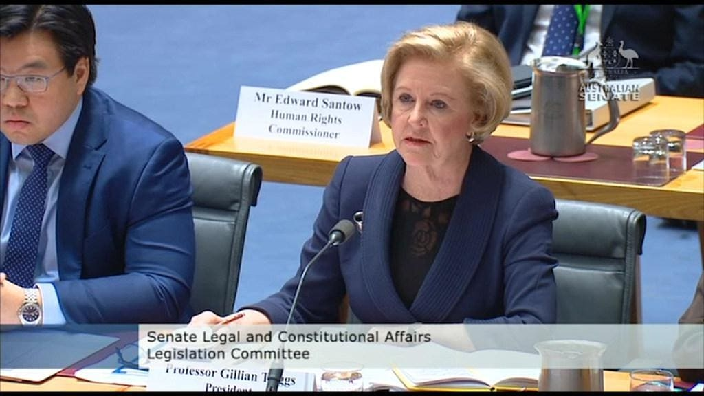 Triggs under fire from Coalition