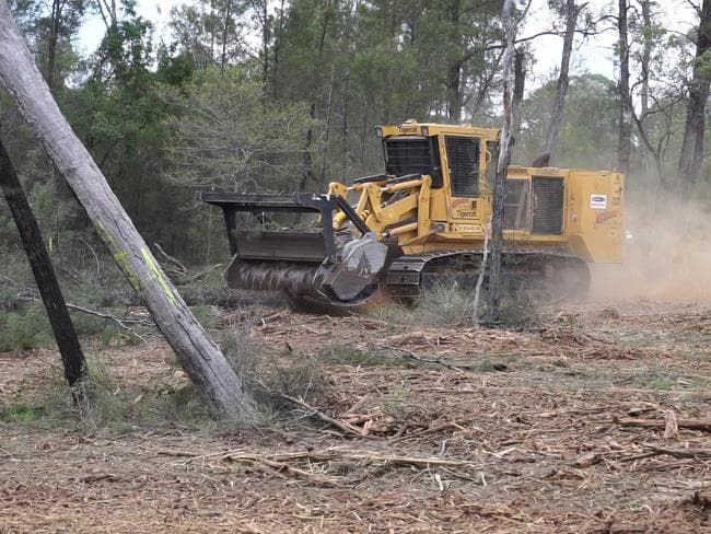 Clearing near Roma, Queensland. The machine shown here is deadly for wildlife because it both pushes trees over and mulches them, not allowing animals any time to escape.