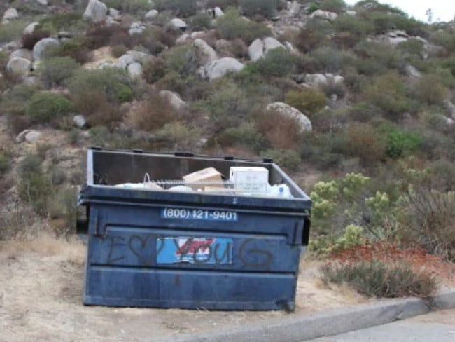 Ms Choo's body was found in this dumpster.