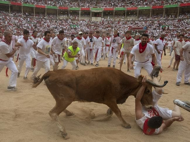 A heifer tosses a reveller in the bullring in Pamplona, Spain. Picture: Getty