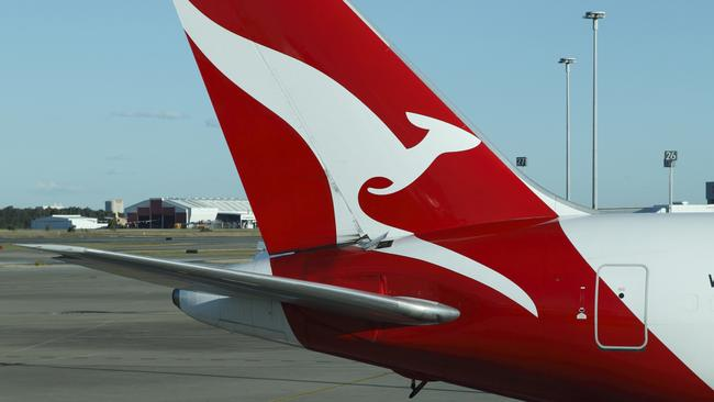 Qantas said Frank was not mishandled on the flight to Melbourne.