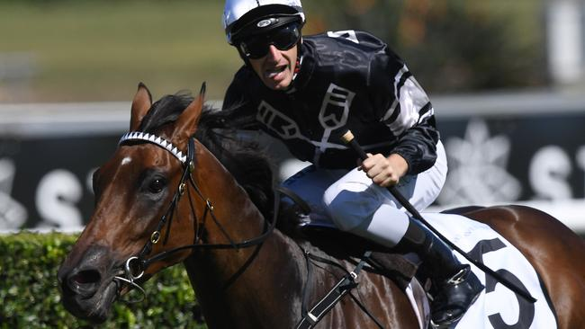 Victorem has been well backed to win The Kosciuszko at Royal Randwick. Picture: AAP