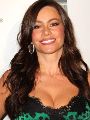 Actress Sofia Vergara in 2010 Picture: Getty