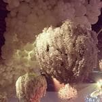 "Kris Jenner's Great-Gatsby themed 60th birthday party... ""This was divine!!!! The Orchids hanging from the ceiling and these spectacular Balloons !!!! I was SPEECHLESS @jeffleatham you are truly magical"" Picture: krisjenner/Instagram"