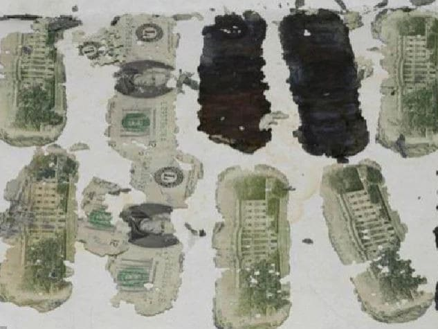Deteriorated $20 notes, which were found by a boy in Washington in 1980, were thought to be part of the ransom money demanded by the hijacker.