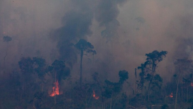 When the Amazon burned, billboards were erected and Hollywood A-listers like Leonardo Dicaprio, Vanessa Hudgens, and Zoey Deutch pledged millions to relief efforts. Image: Getty