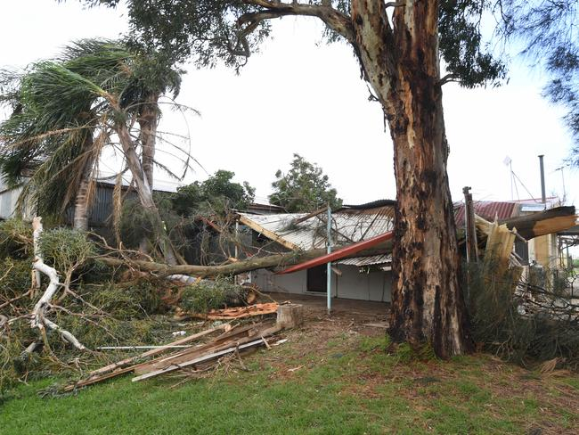 A tree caused substantial damage at Maria and Nicolas Yfantidis' house in Virginia, South Australia. Picture: Tricia Watkinson