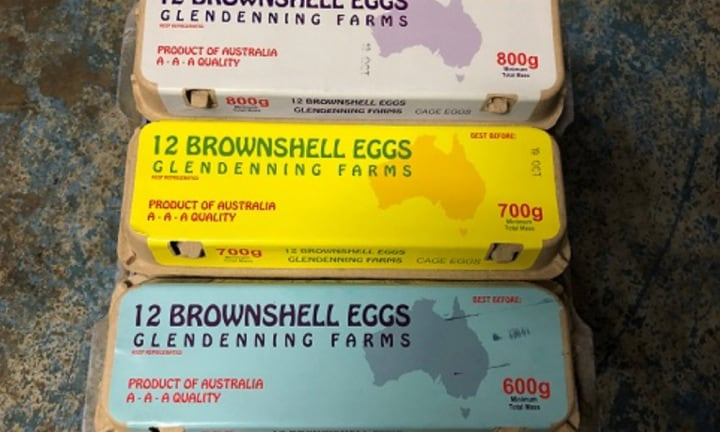 Brownshell Glendenning eggs