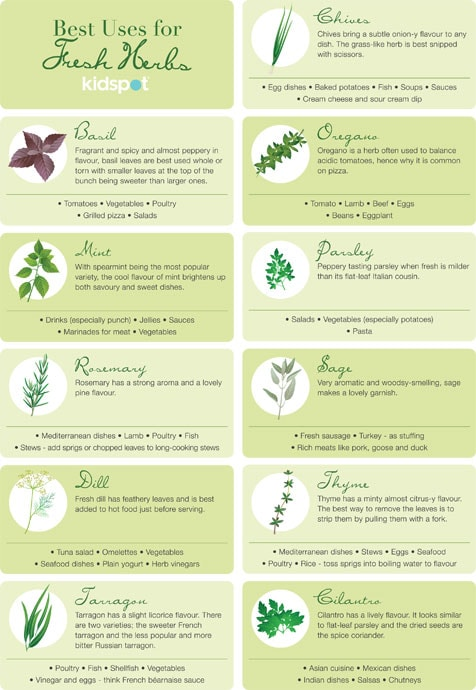 herb reference guide