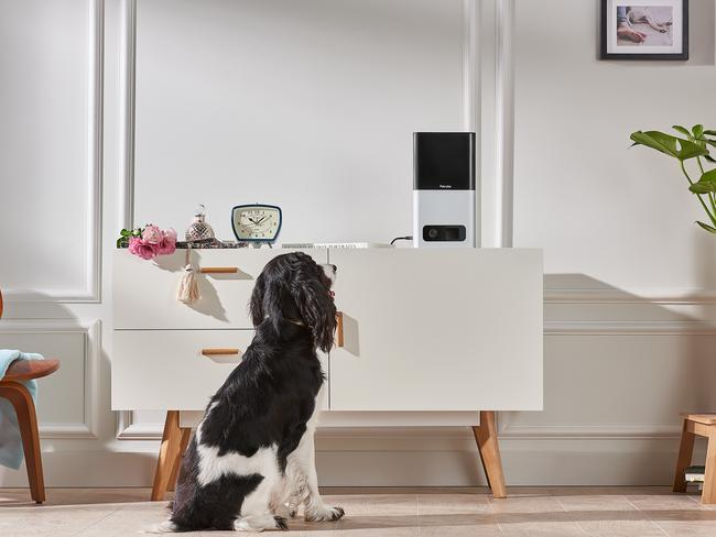 The PetCube Bites smart home device lets pet owners monitor their furry friends from afar.