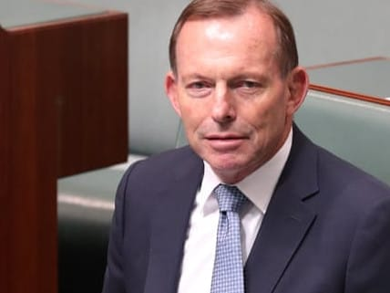 Zali Steggall to challenge Tony Abbott for Warringah seat.