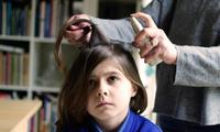 Head lice: The facts