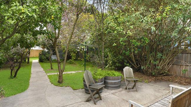 Little Cecil has plenty of room to play in the backyard at 81 McKillop St, Geelong. Supplied.