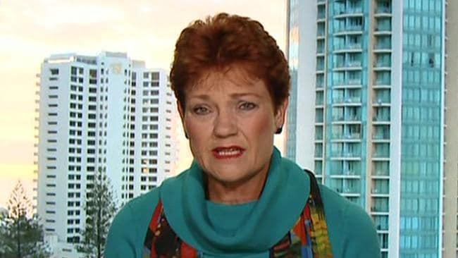 "Pauline Hanson says Turnbull ""fell over the line by a nose"""
