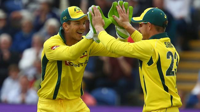 D'Arcy Short celebrates with Australia's captain Tim Paine. Cricket fans will be the first to benefit from Foxtel's 4K.
