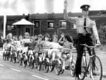 Cadet police officer Chris Hotchkiss teaches Mitchell Park Infant School students abour road safety at Thebarton in1970.