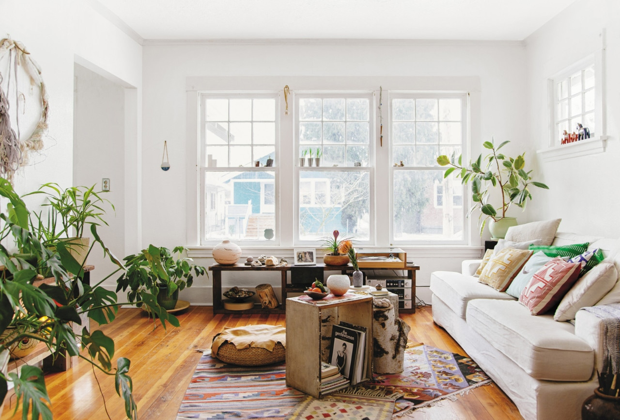 How indoor plants can work in any size room