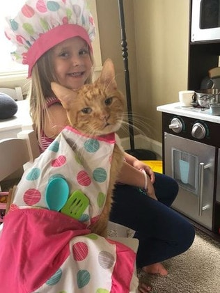 The girls played house, bathed and dressed Bailey up in all kinds of costumes. Source: Instagram/Bailey No Ordinary Cat