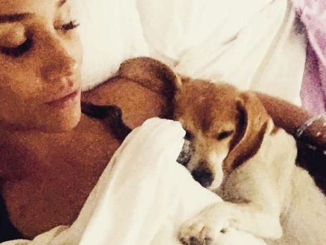 A since-deleted Instagram picture of Meghan Markle and her beagle, Guy.