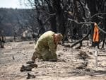 January 13, 2020: Kangaroo Island fire ... Lieutenant Kynan Lang visits the site on Playford Hwy where his uncle Dick Land and cousin Clayton Lang were killed in the bushfire on the 3rd January. Picture: Brad Fleet