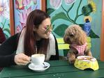 Dominique and Kola Fragnito enjoying a coffee and puppycino at Argos on the Parade. Picture: Menni Sfyrios