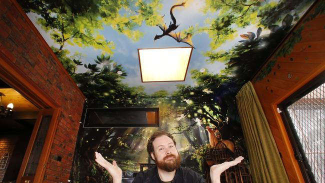 Luke inside the enchanted forest bedroom. Picture: David Caird