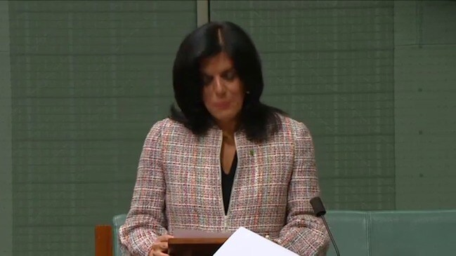 Liberal MP Julia Banks calls for gender quotas in parliament