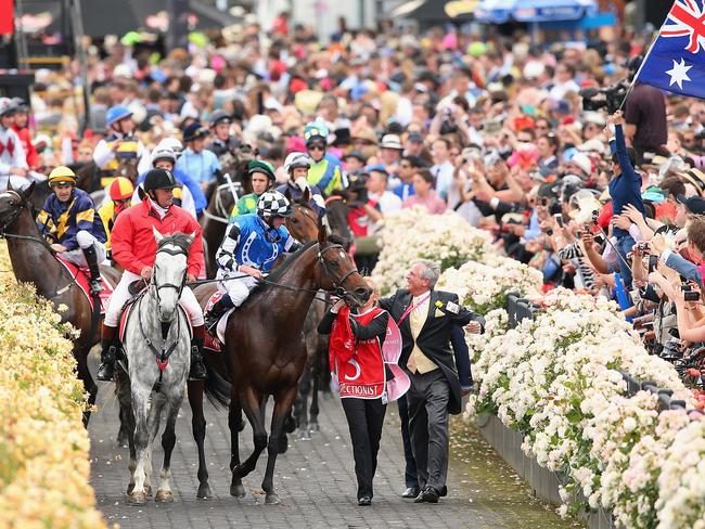 Araldo (left) ridden by Dwayne Dunn is spooked by a patron waving a flag as the horses return to scale after racing in the Emirates Melbourne Cup. Picture: Quinn Rooney