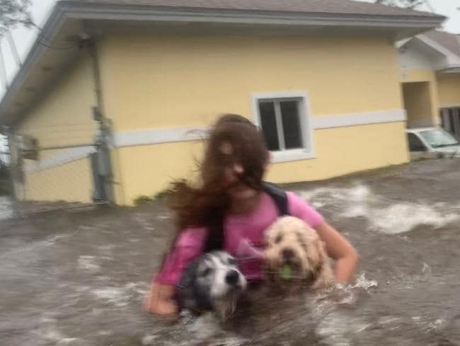 Julia Aylen wades through waist-deep water carrying her pet dogs as she is rescued from her flooded home. Picture: Tim Aylen/AP Photo