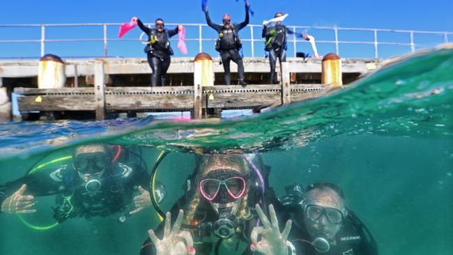 The Guinness World Record attempt at longest scuba diver chain along the pier at Rye. Picture: Alex Coppel
