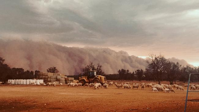 Walls of dust descended on Tuesday ahead of thunderstorms which brought rainfall of between five and 15mm. Picture: Louise Turner/AAP